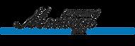 Medical_Logo_högupplöst_transparant_(3)_