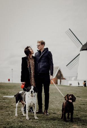 Windmills & Dogs