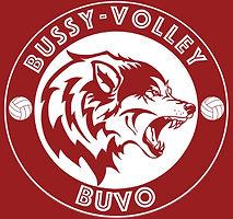 Bussy Volley.jpg