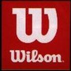 Logo Wilson 100.jpg
