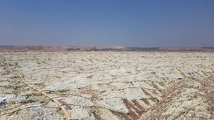 Линия капельного орошения  капельное орошение в местах добычи золота, меди и урана