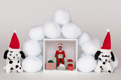 Snowballs Puppies and Box Template