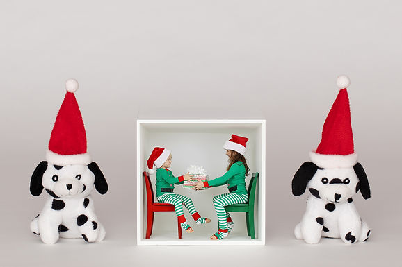 Puppies and Box 1 FB.jpg