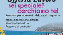 """""""OFFERTA LAVORO"""" in Sicilia, e Calabria."""