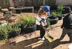 Clean the Yard