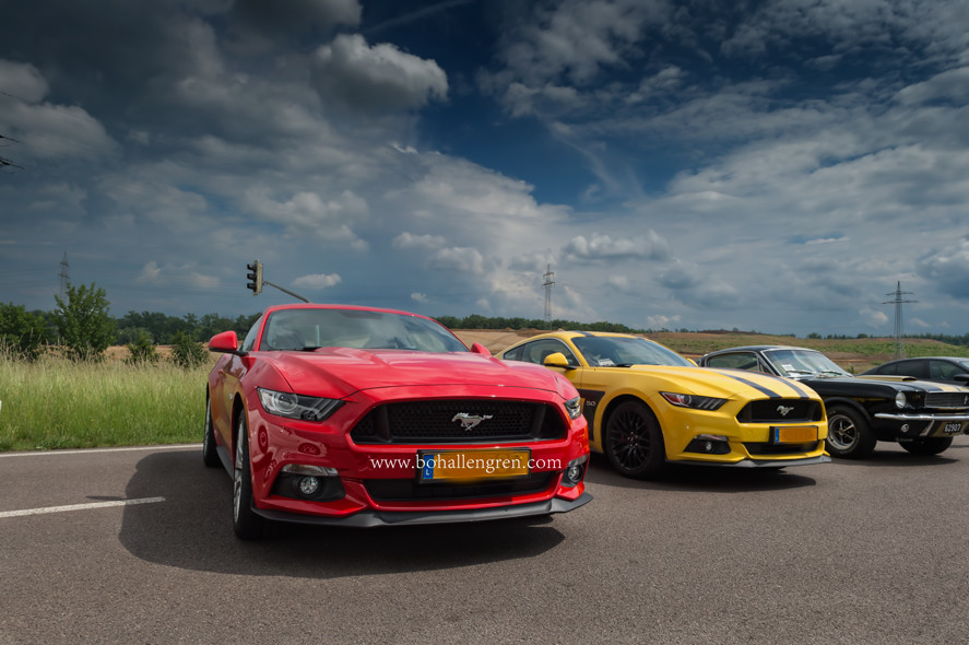 Driving Experience For Charity & Exclusive Car Exhibition