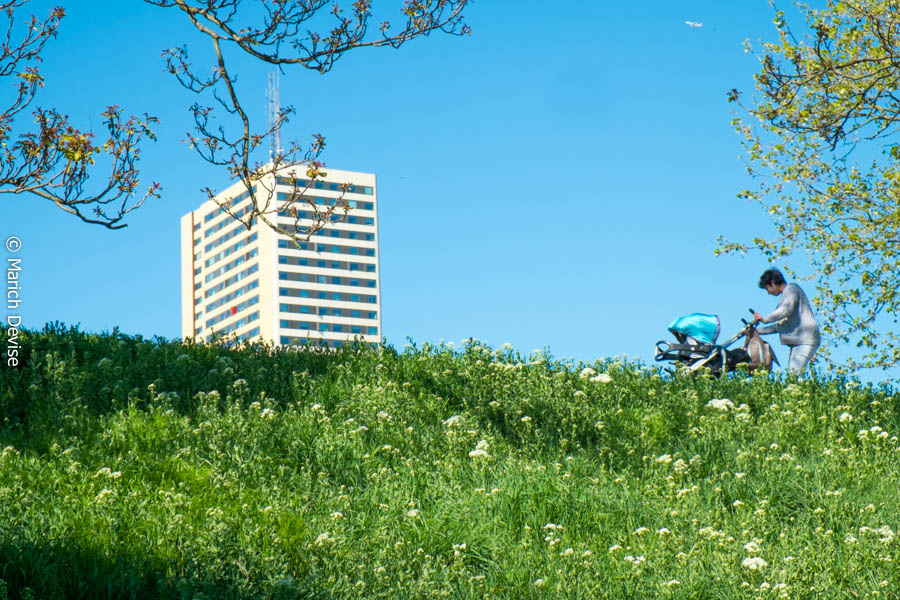 Parc des Cités