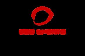 CSD Fantasy Logo