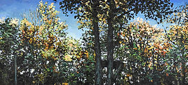 FrontYardTrees-1048.jpg