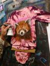 Red Panda Custom