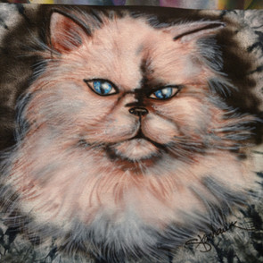 Awesome Cat commissioned piece