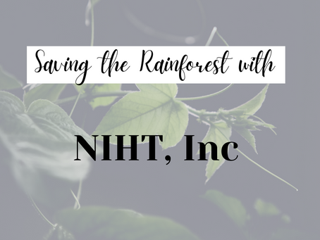 Learn more about NIHT's conservation efforts using carbon credits in biodiversity hotspots
