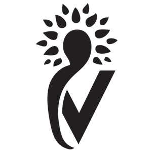 The-Village-Logo-Favicon.png
