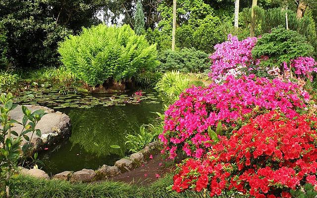 Грузия Ботанический сад Батуми