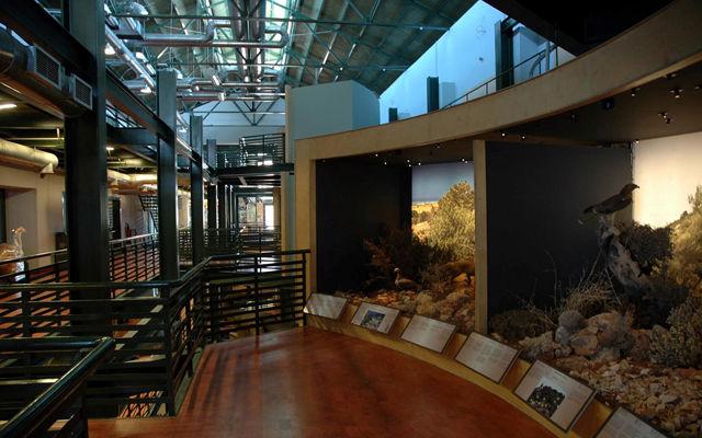 Греция Крит Музей естественной истории Крита