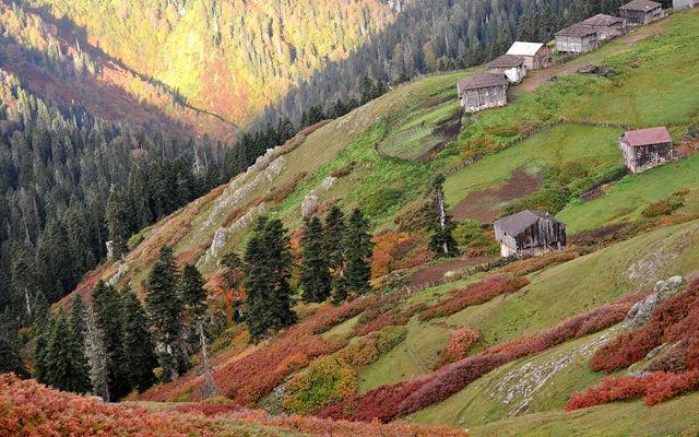 Грузия Гурия
