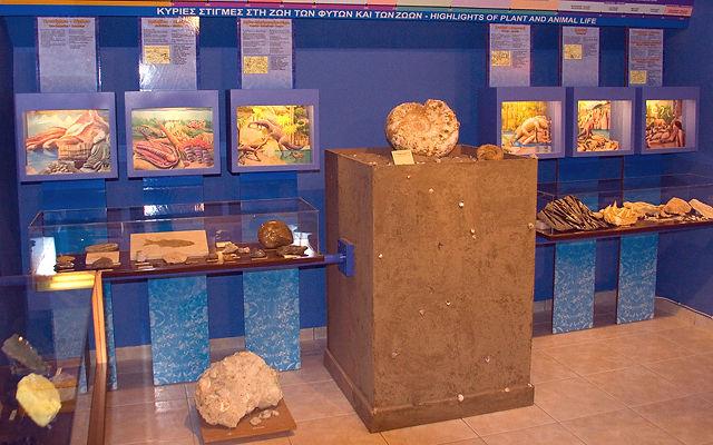 Греция Закинф Музей естественной истории Хельми