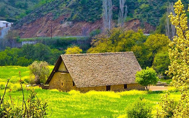 Кипр Церковь Богородицы Подиту