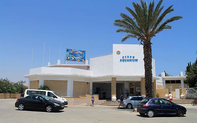 Кипр  Аквариум (Протарас)