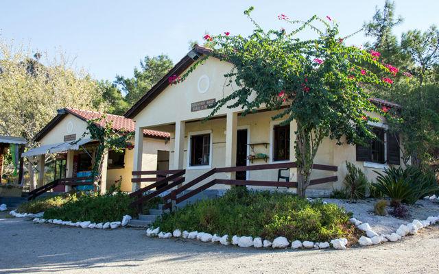 Греция Родос Страусиная ферма Родоса