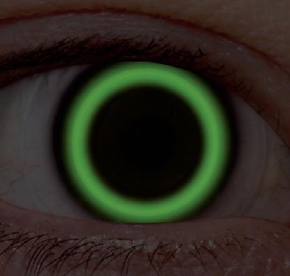 Image_EyeBridSilicone_fit_Optimal.png