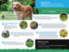 6factsdogwaste-poster_preview.jpg