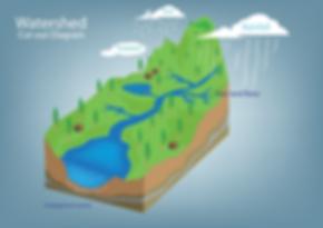 Watershed diagram-1.png