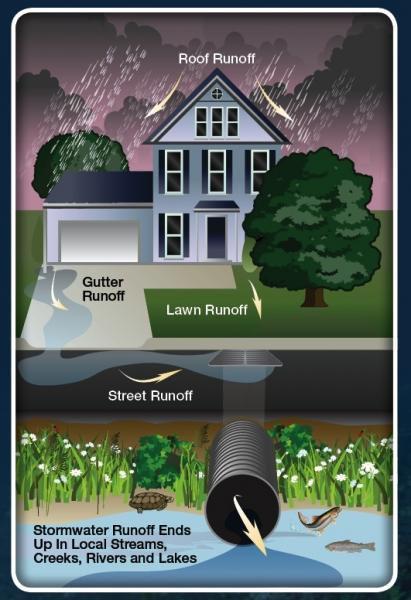 Stormwater_House_Illustration.jpg
