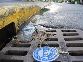 Catch basin trash.JPG
