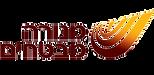לוגו ש מנורה מבטחים