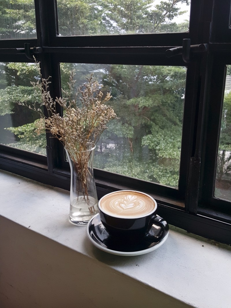 coffee-cup-and-plant-in-vase-on-windowsill