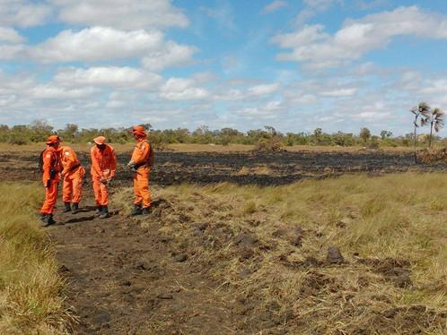 Incêndio destrói mais de 7 km de vegetação em fazenda de LEM