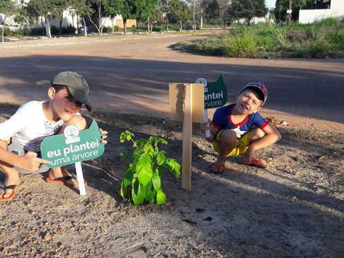 Moradores e secretaria do meio ambiente realizam plantio de árvores no Cidade Universitária