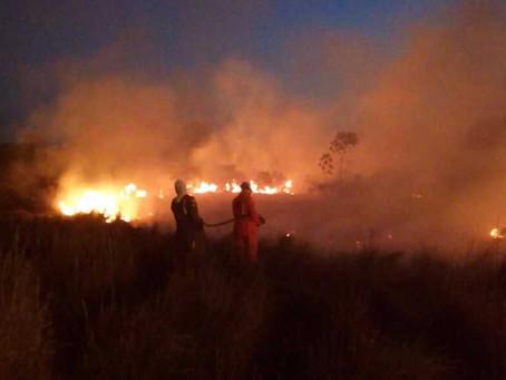 Novo incêndio atinge região do povoado Novo Paraná e interdita BR 020