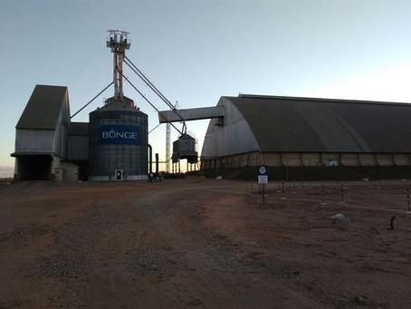 Bandidos rendem funcionários e roubam 350 toneladas de soja da Bunge
