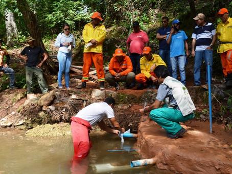 Projeto de recuperação de nascentes dos produtores baianos é finalista de premiação nacional