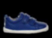 BOBUX_PWEBSID_728920_BlueberryGrassCourt