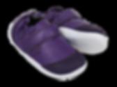 BOBUX_PWEBDYN_501009_VioletGo_2.png