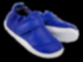 BOBUX_PWEBDYN_501004_BlueberryGo_2.png