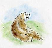 cartoon bear.jpg