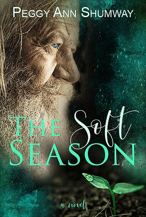 soft season 15 book coverwebsite.jpg