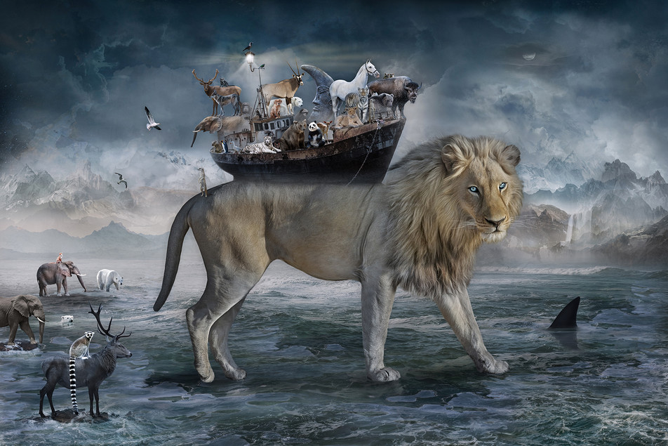 NOAH THE LIONS HEART ©2021