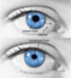 eyesSoftEdge.png