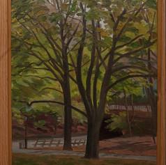 %22Trees - Central Park%22 1983 16%22 x 12%22.jpg