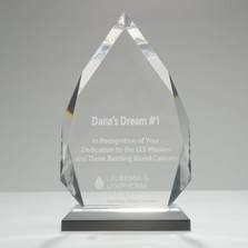 Woltman-Custom-Acrylic-Awards-Silver_Dia