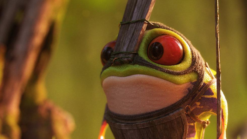 frog_detail_01.jpg