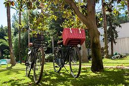 Marbella Cycling