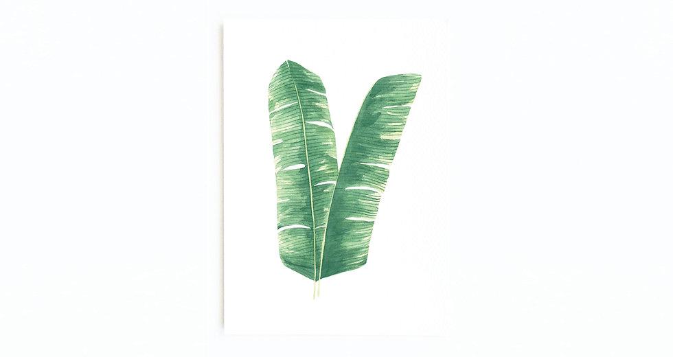 BANANA PALM CARD