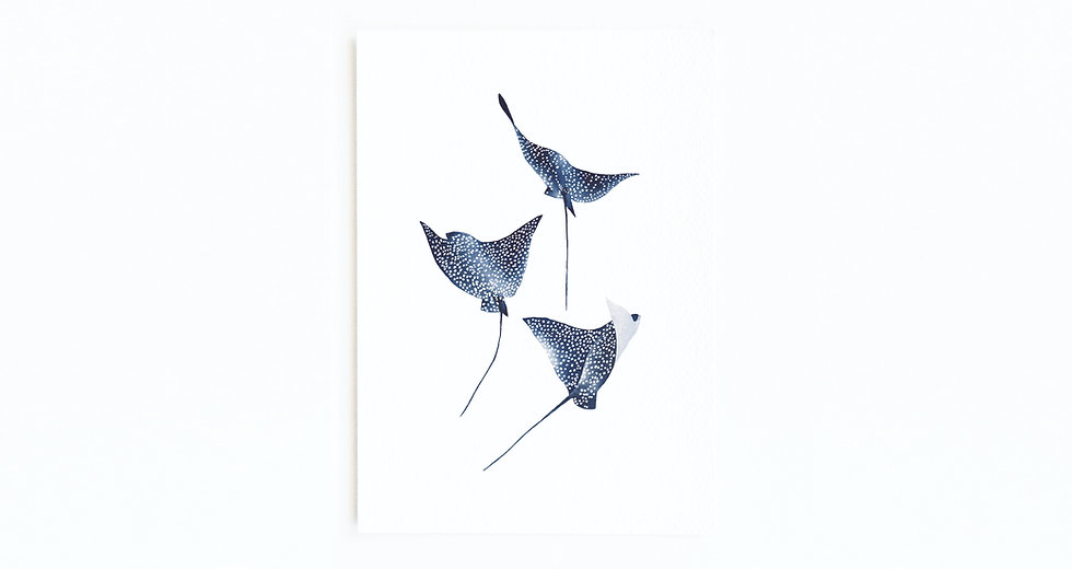 EAGLE RAY CARD