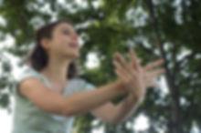 photo_arbre_à_histoires_papillon_p.jpg